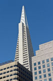 Transamerica building Royalty Free Stock Photos