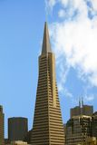 Transamerica building in S.F. Transamerica building which is shaped Royalty Free Stock Images