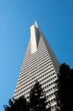 Transamerica Pyramid Royalty Free Stock Photo