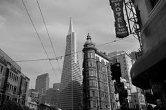 Transamerica Pyramid Stock Photos