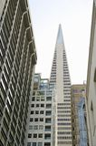 Transamerica Pyramid San Francisco designed by William Pereira Royalty Free Stock Photos