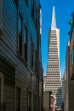 Transamerica Pyramid in San Francisco royalty free stock images