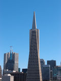 Transamerica Pyramid and tall buildings of downtown of San Franc Royalty Free Stock Photography