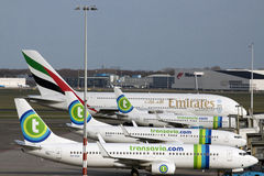 Transavia flygplan som är klara för lopp Fotografering för Bildbyråer