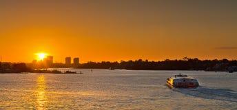 Transbordador de Parramatta en la puesta del sol Fotos de archivo libres de regalías