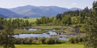 Transbordador Idaho del norte de Bonners del valle del paraíso Imagenes de archivo