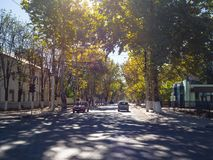 Transdniestria Tiraspol Oktober 2018 Skuggig höstgata av staden med bilar arkivbild
