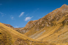 Transfagarasan Photos stock