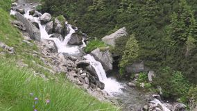 Mountain rivers and waterfalls in Transfagarasan pass at summer. Carpathian mountains in Romania, Transfagarasan is one of the mos. Transfagarasan pass in summer stock video