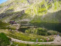 The Transfagarasan road royalty free stock photos