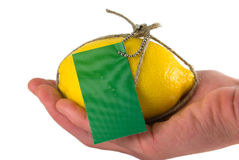 Transfer of fruit. The tied up, packed and marked fruit close up on a white background Stock Image
