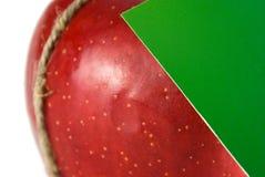 Transferencia de la fruta foto de archivo libre de regalías