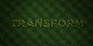 TRANSFORM - fresh Grass letters with flowers and dandelions - 3D rendered royalty free stock image. Can be used for online banner ads and direct mailers Royalty Free Stock Images