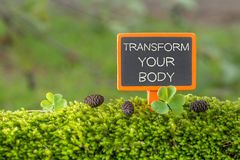 Transform your body text on small blackboard. Sign on green moss with Clover , blur green tree plant background stock photos