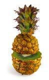A transformação do abacaxi no quivi Imagens de Stock Royalty Free