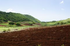 Transformación del paisaje de la estación de lluvias fotos de archivo