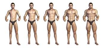 Transformación paso a paso del Bodybuilder stock de ilustración