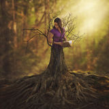 Transformar em uma árvore Imagens de Stock