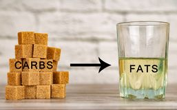 Transformation of carbohydrates into fats in human body. Concept. Ual stock photos