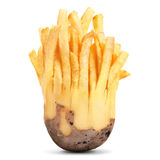 Transformed into fried potatoes Royalty Free Stock Photo