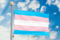 Transgender flag waving in blue cloudy sky, 3D rendering