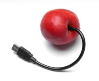 Transgenic fruit. Apple with USB cable. Transgenic food concept. Camera Nikon D200, lens: Sigma 70-200 APO royalty free stock images