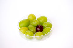 Transgenic grapes Stock Photo