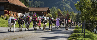 Transhumance event in Charmey Royalty Free Stock Image