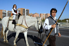 Transhumance .Madrid - Spain Royalty Free Stock Images