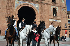 Transhumance in Madrid - Spanien Lizenzfreie Stockfotos