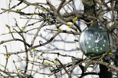 A transição às horas de verão, a chegada da mola, o pulso de disparo no fundo dos ramos com botões de florescência em um ensolara imagens de stock