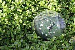 A transição às horas de verão, a chegada da mola, o pulso de disparo no fundo da grama verde-clara da mola com um lugar para fotos de stock royalty free