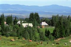 transilvanian село Стоковое фото RF