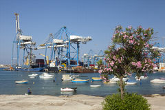 Transit port. View to transit port in Malta, with clear sea water and small boats and tree with blossom in the front. Sunny day Stock Photos