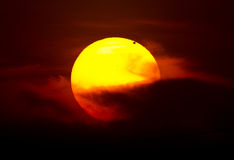 Transit of Venus Royalty Free Stock Images