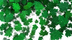 Transition with green leaves. And isolate masking stock footage