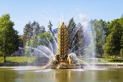 """Transitoire """"d'or """"de """"Zolotoy Kolos """"de fontaine sur le territoire du centre d'exposition Tout-russe VDNH moscou photos stock"""