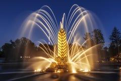 """Transitoire """"d'or """"de """"Zolotoy Kolos """"de fontaine sur le territoire du centre d'exposition Tout-russe VDNH le soir moscou photos libres de droits"""