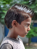 Transitoires de cheveu image libre de droits
