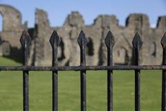 Transitoires de clôture noires photographie stock