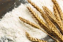 Transitoires de farine et de blé photos libres de droits