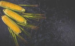 Transitoires de maïs et de blé photos stock