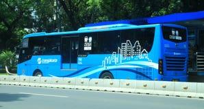 TransJakarta公共汽车 库存图片