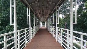 Transjakarta di Halte Fotografia Stock