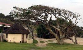 Transkei semesterort Arkivbild