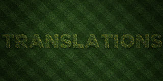 TRANSLATIONS - fresh Grass letters with flowers and dandelions - 3D rendered royalty free stock image Stock Image