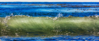 Translucent Ocean Wave Stock Photography