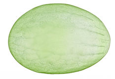 Translucent slice of green grape fruit Royalty Free Stock Image