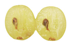 Translucent slice of green grape fruit Stock Image