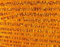 Translucide en verre orange gentil avec la lumière images libres de droits